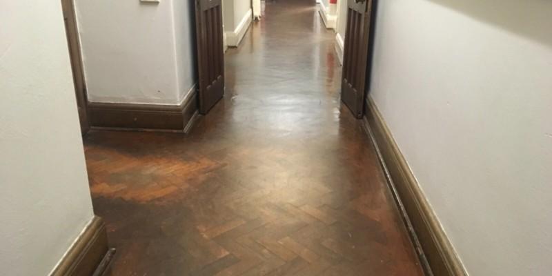Parquet floor sanded